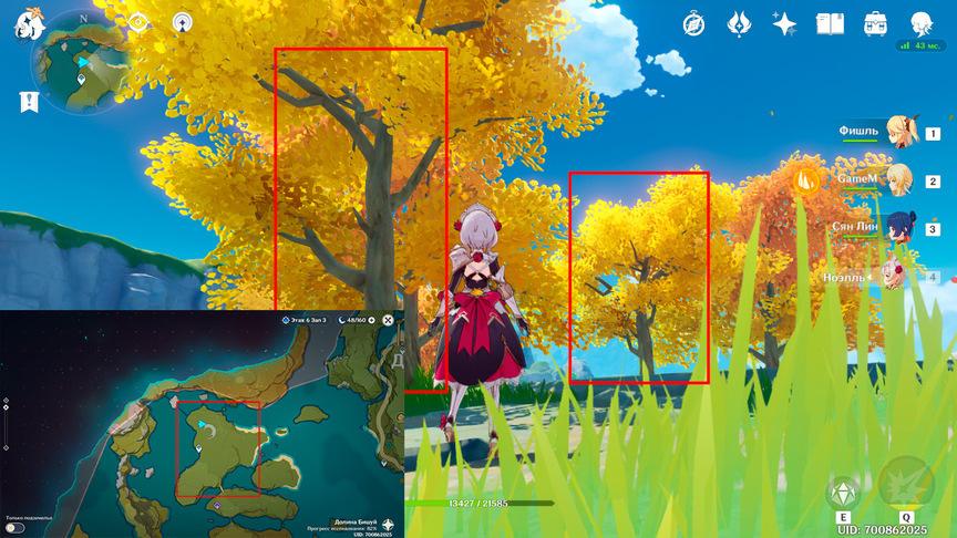 Genshin Impact Местонахождение деревьев. Древесина для мебели